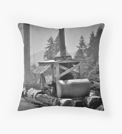 Mule, Camp 18, Oregon Throw Pillow