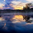 Dawn At the Pond by Kathy Weaver
