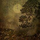 Dusk by Jeff Burgess