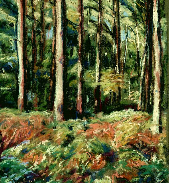 Queenswood, Herefordshire in Autumn by Judy Adamson
