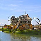 Seen Better Days by Barbara  Brown