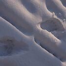Barefoot in the Snow by Jackie Muncy