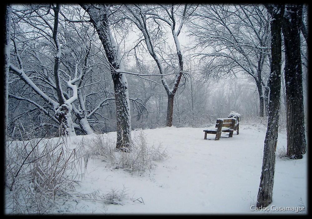 Winter Mystery 5 by Carlos Casamayor