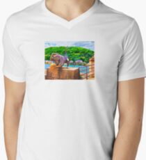 BRIDGE MONKEY (Heidelberg, Germany) V-Neck T-Shirt