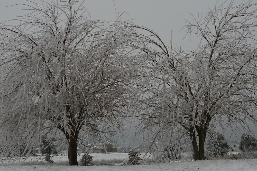A Gray Day by ojburritt