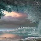 First Frost by Igor Zenin