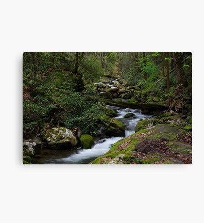 The Roaring Fork Canvas Print