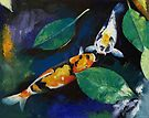 Koi and Banyan Leaves by Michael Creese