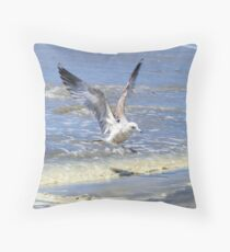 Ready To Land Throw Pillow
