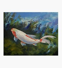 Zen Koi Photographic Print