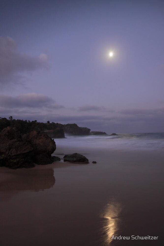The Moonlit Sands by Andrew Schweitzer