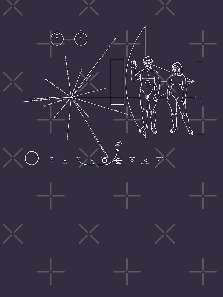 Pioneer Plaque by odibil