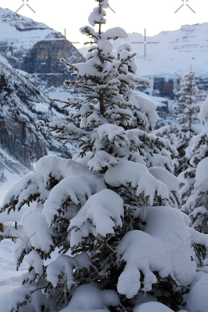 Blankets of Snow by Alyce Taylor