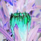 Nachbarn Protea von GriffMAD