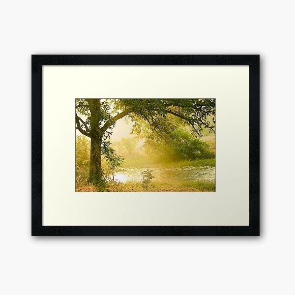 A Misty Morning Framed Art Print