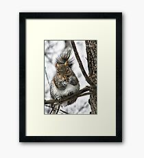 """""""Hey! Is That A Snowflake On Your Nose?"""" Framed Print"""