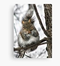 """""""Hey! Is That A Snowflake On Your Nose?"""" Canvas Print"""