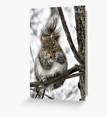 """""""Hey! Is That A Snowflake On Your Nose?"""" Greeting Card"""