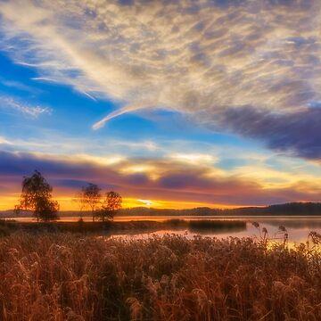 October Morning 16 by wekegene