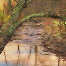 The Creek by KathleenRinker