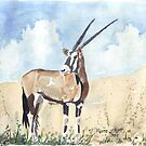 Rapier horns - Gemsbuck by Maree Clarkson
