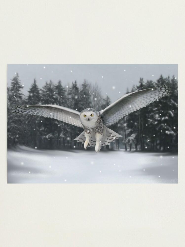 Alternate view of Take flight Photographic Print