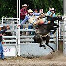 Bucking Bronco by TonySlattery