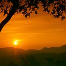 Golden Sunset by bnilesh