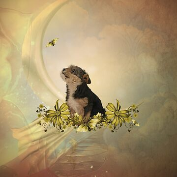 Cute little yorkshire terrier with butterflies by nicky2342
