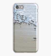 Shorebirds iPhone Case/Skin