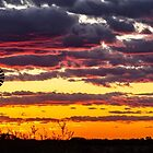 A Country Sunset by robcaddy