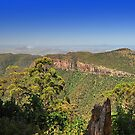 Main Range National Park by Claire  Farley