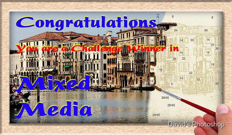 Mixed Media Challenge Winner Banner by David's Photoshop