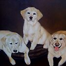 Lynly's Puppies by Joseph Colella