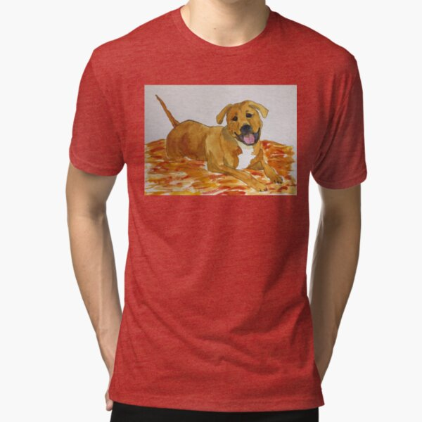 Mandy Tri-blend T-Shirt