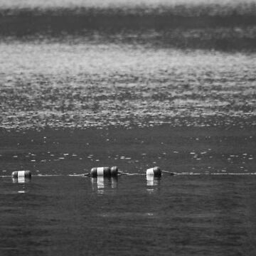 Lake Buoys in Black & White by MBWright88