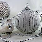 Christmas Bird by Dawn van Doorn