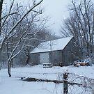 Winter Barn by terralee