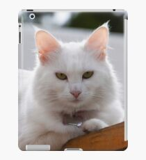 Really not another picture! iPad Case/Skin