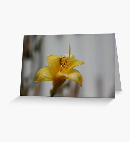 Waiting for Monica - Yellow Greeting Card