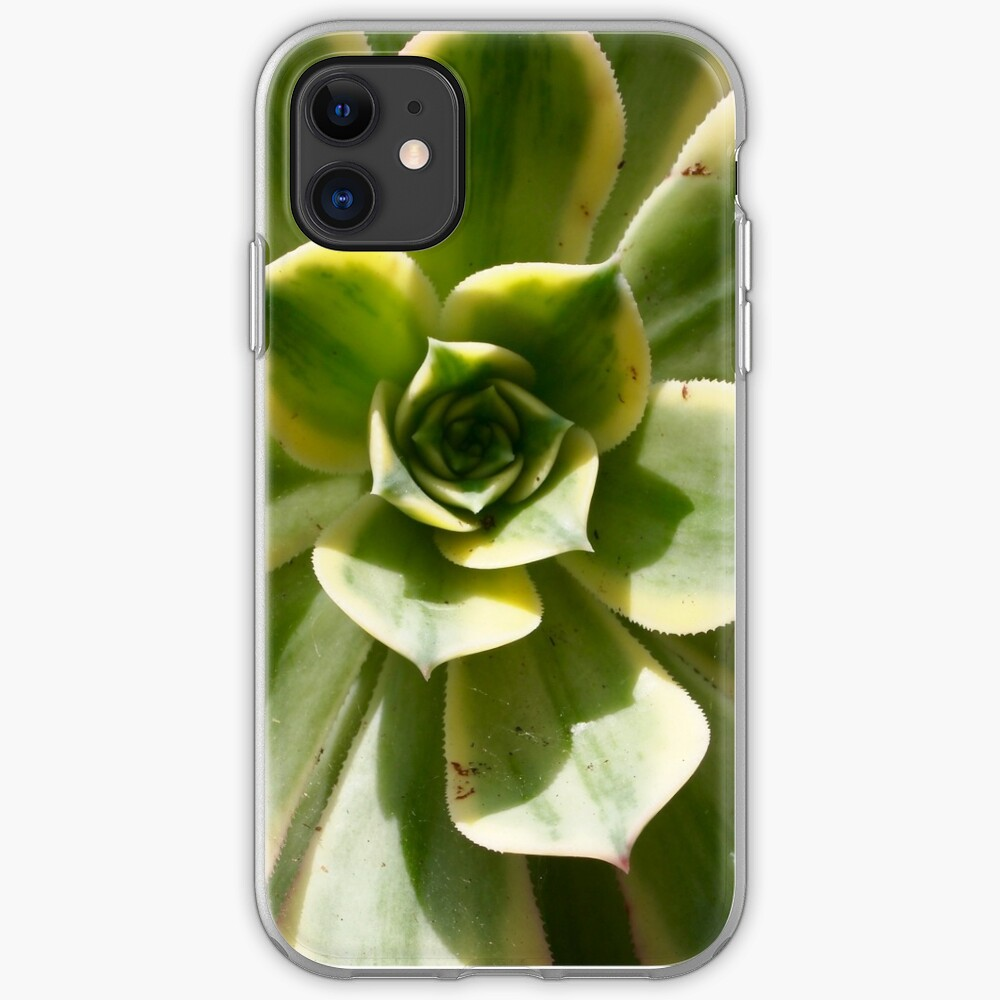 Succulent in the Sun iPhone Case & Cover