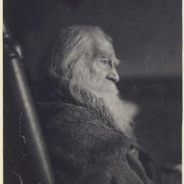 Vintage Sombre Walt Whitman artistic portrait photograph by Geekimpact