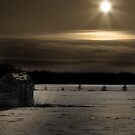 Moon Rising by Chintsala