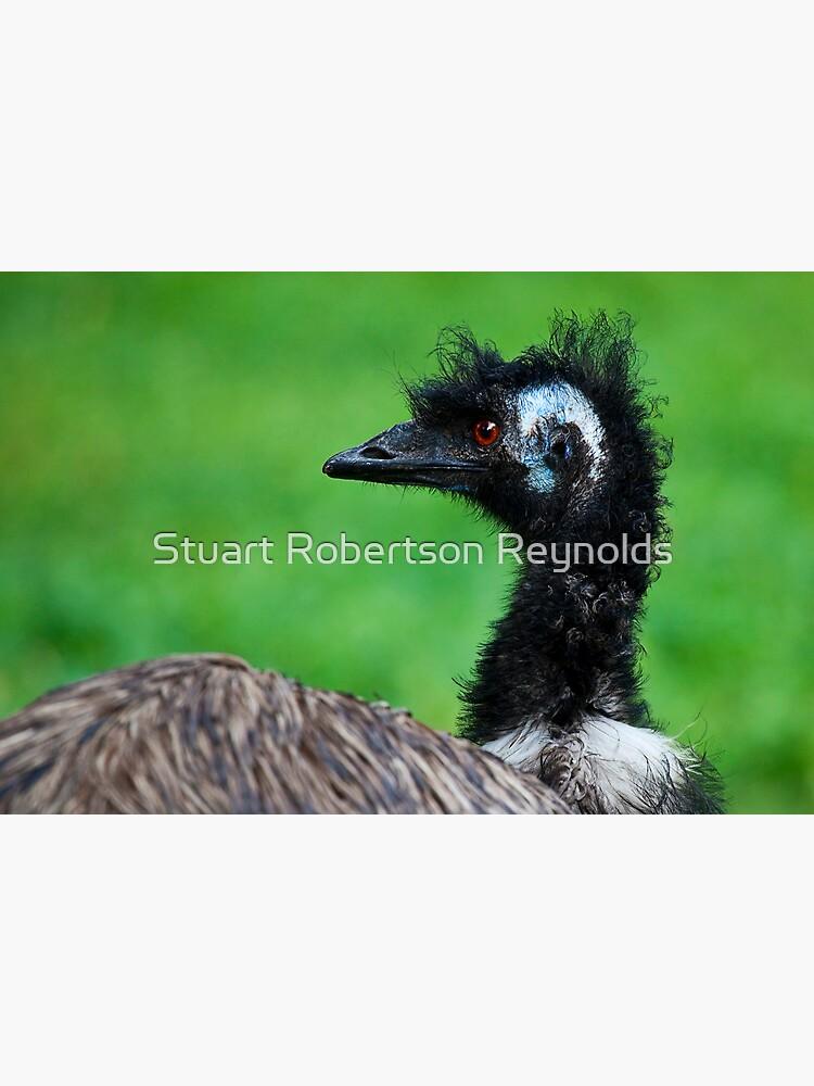 Emu by Sparky2000