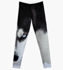 If Looks Could Kill - Black and White Husky Leggings