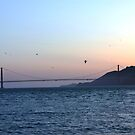 San Francisco Bay by Vicki Hudson