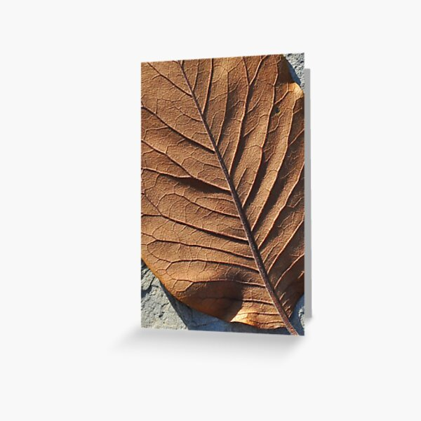 Leafscape Greeting Card