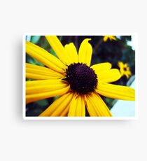 The One I Love. Canvas Print