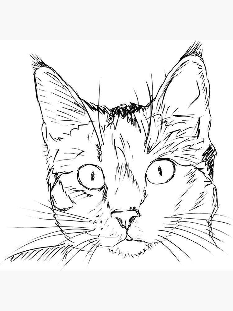 """Cat Drawing - Cute Cat Sketch - Cat Art - Cat Face"" Metal ..."