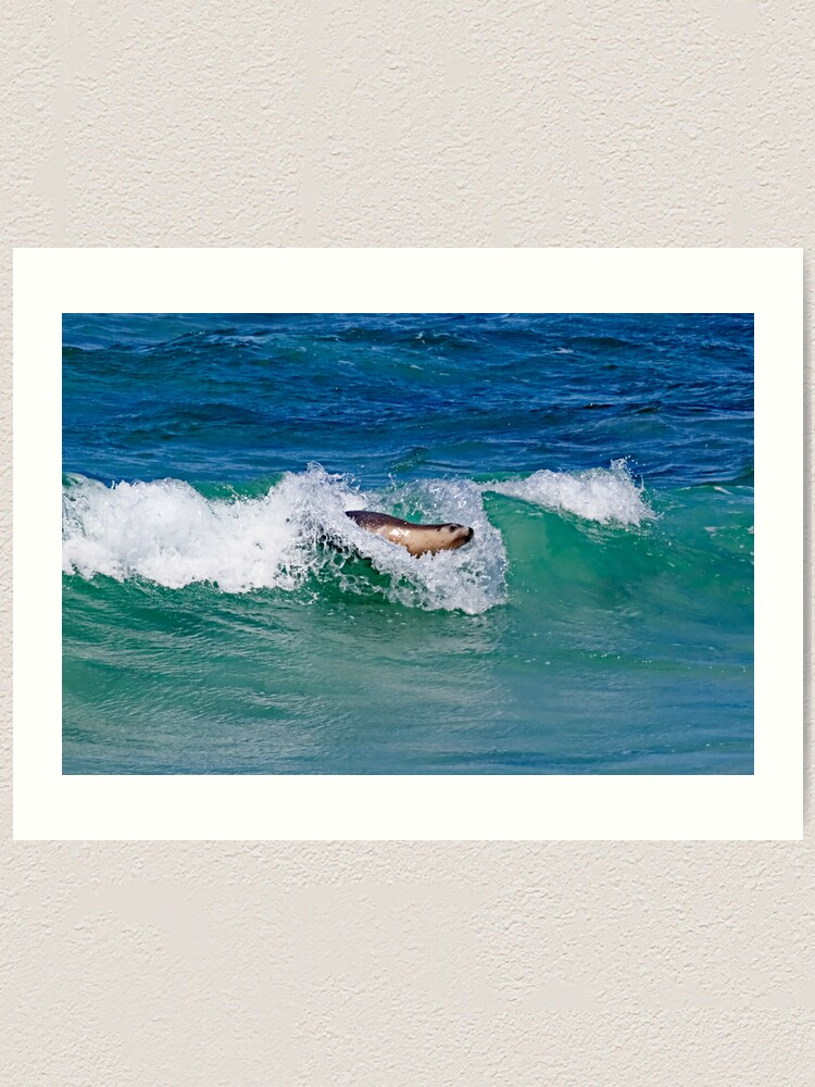Alternate view of Surfing Sea Lion Art Print